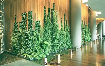 Go Green! Veja os benefícios de ter um hotel sustentável